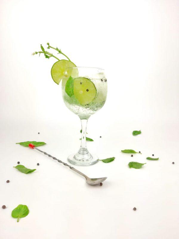copa de gin tonic